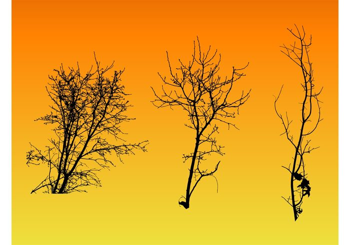 twigs trees Simplified silhouettes park nature Minimal stylized leaves garden forest