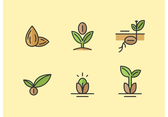 sprouting seed seeds seedling seed icon seed plant nut nature Minimal design minimal green go green gardening garden seed garden flat farming farm ecologic eco agriculture