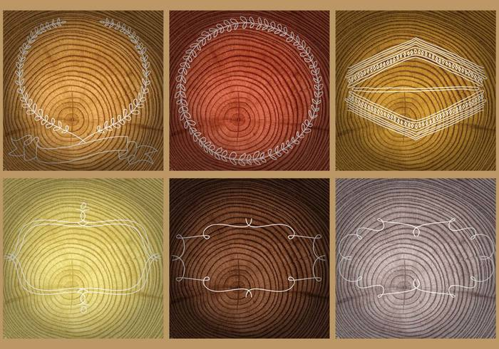 wooden wood trunk tree rings tree ring tree timber textured texture tablet table stump structure space slice shape saw ring plaque plant plank pine pattern panel old oak nature natural lumber Log layout hardwood framework frame Damaged cut crack construction circle brown break border bark background aging