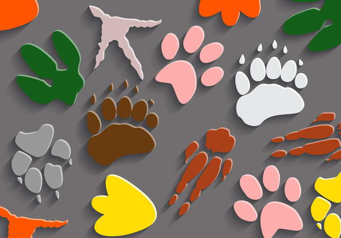 yellow wolf vector trace tiger texture shadow pink pet penguin paw orange lots of legs kangaroo imprint green gray background gray footprint dinosaur footprints dinosaur footprint dinosaur different tracks different paws chicken cat burgundy brown bear background