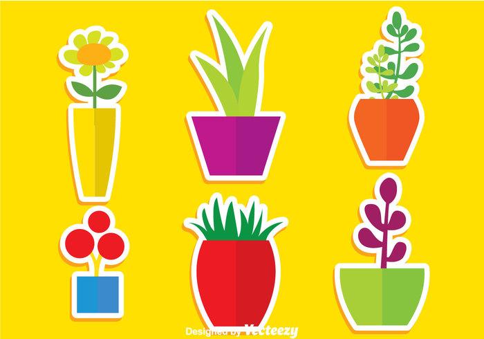 Sun flower potted plant pot plants planter plant nature natural leaf Houseplant grass garden flower pot flower planter flower flora flat