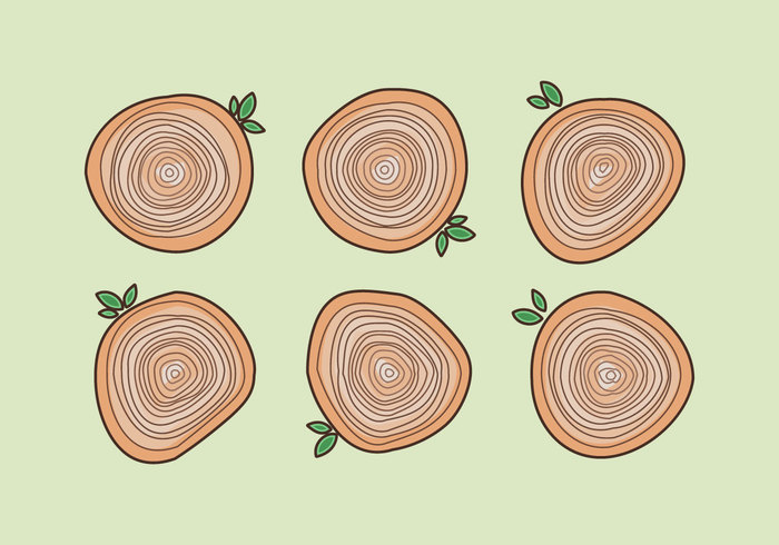 wood tree rings tree toon rings plant pine nature natural green fresh forest cartoon