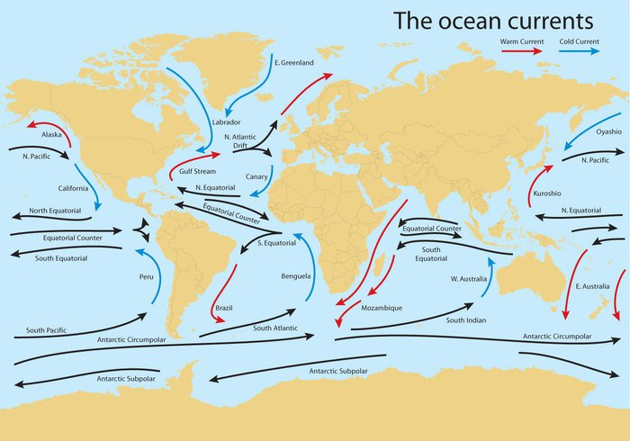 worldmap world map world wind waves water warm vector temperature subpolar structure southern science scheme regions Pacific oceanic ocean norwegian nature map Labrador kuroshio kurile indian image illustration gulf stream geoscientific geology geography Europe Equator effect education earth diagram Current continuous continental continent cold climate circumpolar Cartography Canary background Australia arctic Antarctic america