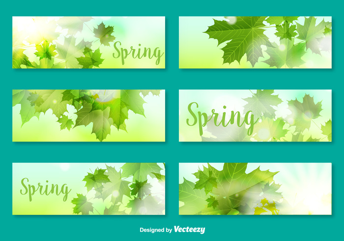vector template spring set seed season postcard nature natural leaf greeting green garden foliage element decorative collection card botany background hijau