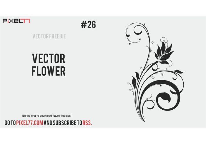 vector freebie free flower flourish floral