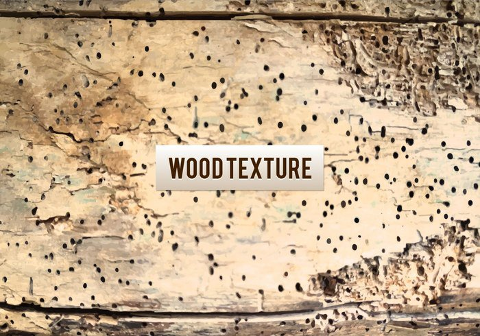 wooden wood wall vintage textured structure stained stage spotlight space slum showroom shadow rusty rural rugged row rough room retro plank panel Nobody material interior inside indoor home hardwood hard grunge floorboard floor empty effects design Damaged cracks cope construction concept brown blank background backdrop art ancient aged