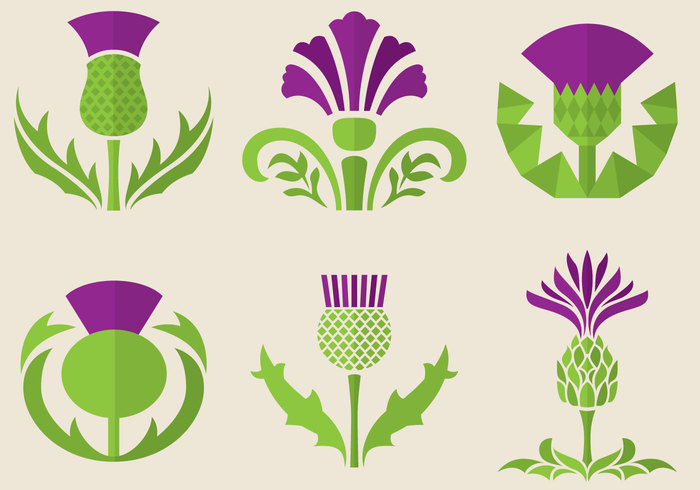 web victorian vector UK traditional thorn thistle symbol stencil site simple sign sharp scots scotland royal round plant mosaic modern medieval line leaf internet interior illustration icon highland heraldry heraldic Gaelic flower floral flat field emblem elements edinburgh design decor crown Coat castle Britain brand banner arms app abstract
