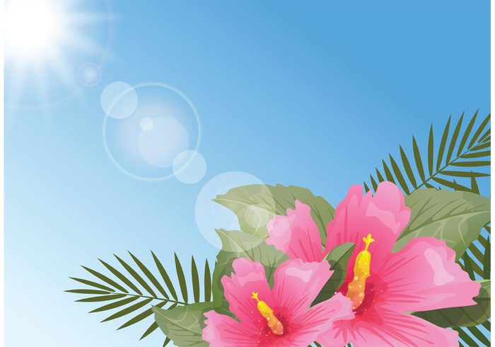 water vector tropical symbol sun summer sky polynesian flower plant pink Palm leaves painting nature islands illustration hibiscus Hawaiian hawaii flower floral drawing design decoration botany blue beautiful art