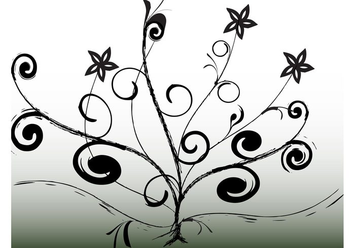 tree swirl stars spiral scrolls park nature growth growing free backgrounds flowers floral black and white abstract