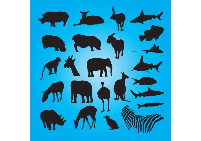 silhouettes shark set rhino pig pack monkey mammal kangaroo horse hippo goat giraffe fish elephant deer bird Bambi ape animals