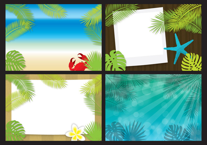 waves vacation tropical Tropic tree travel tourism summer stylish shore seaside sea sand resort relax Rainforest plant paradise Palm leaves palm leaf isolated palm old fashioned ocean monstera leaves background leaf background leaf jungle island holidays Hawaiian hawaii forest foliage flyer exotic colorful coast card beach
