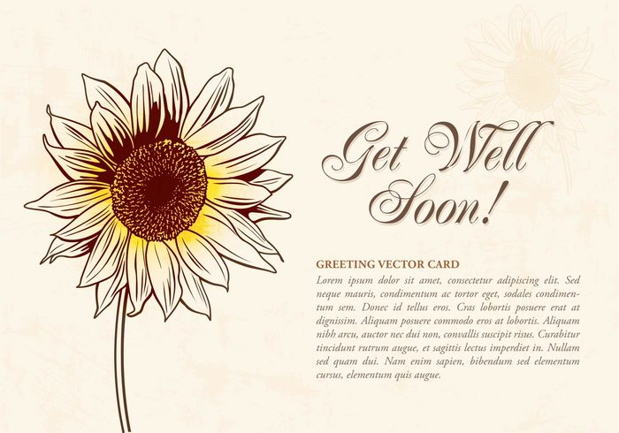 yellow vector sunflower sun summer style stroke sketchy sketch side realistic plant nature natural made line isolated illustration hand grunge get well soon cards garden flower Flores floral flora empty element elegant drawn drawing doodle decorative decoration card bright border beauty beautiful background backdrop artistic art agriculture