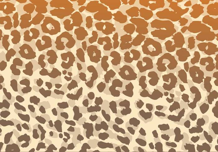 wildlife wild textured texture Textile spots skin safari print pelt pattern nature material mammal leopard patterns leopard pattern leopard leather exotic Coat cat Carnivore camouflage brown background animal african africa