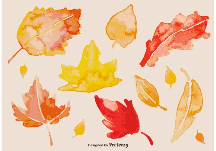 yellow watercolour watercolor vibrant tree texture seasonal season red plant paper paint orange nature natural maple leaf isolated illustration hand graphic foliage Fall drawn drawing decoration colorful brush background autumn