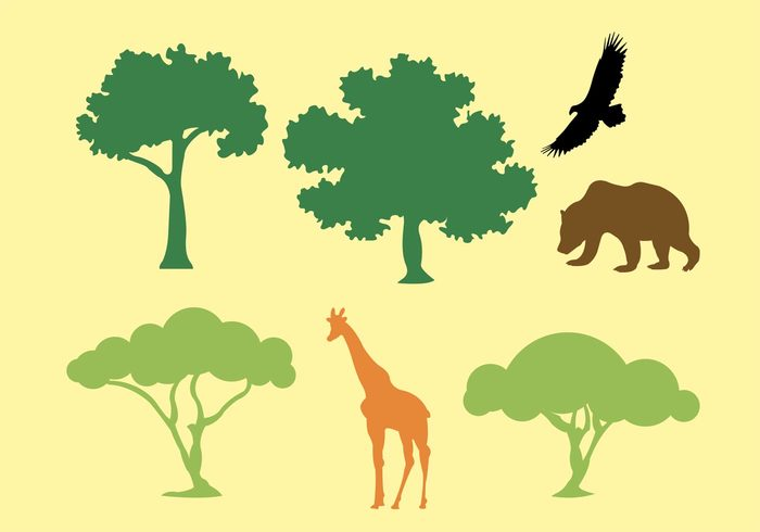 trunk trees tree silhouette shape plant oak tree silhouettes oak tree silhouette oak tree oak leaf growth green giraffe eagle deciduous branch botany bear acacia