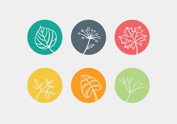 white vector tree summer stem spring silhouette set season plant nature natural maple leave leaf isolated illustration icon green flower Fall ecology design collection clover cartoon botany beautiful autumn abstract