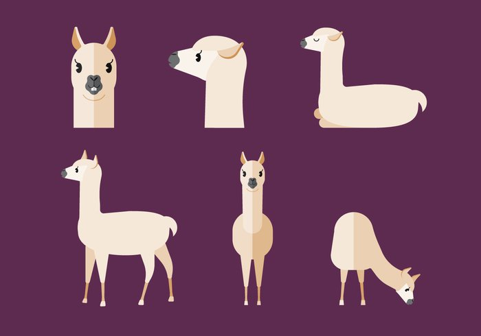wildlife wild vector tropical standing picture nature mammal llama living image illustration graphic fur fluffy exotic drawing cute creature clipart clip art clip character cartoon Carnivore brown background art animal adorable