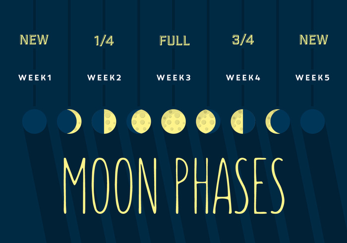 sphere space sky shadow sequence science satellite Quarter planet phases phase orbit night new nature moonlight moon phase moon month lunar illustration full eclipse cycle crescent cosmos black background astronomy astrology