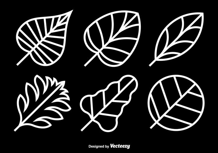 white weed thin silhouette set season plant oak nature natural Marijuana maple line leaf icons flora element ecology botany abstract