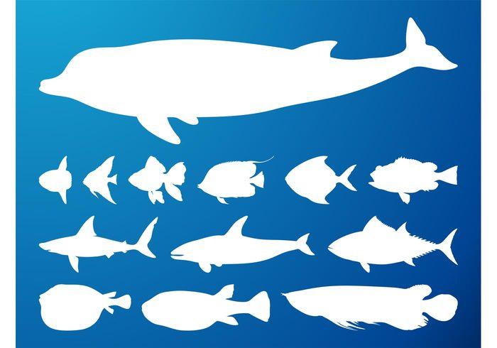 silhouettes silhouette sharks shark sea ocean marine goldfish Fins dolphin animals animal