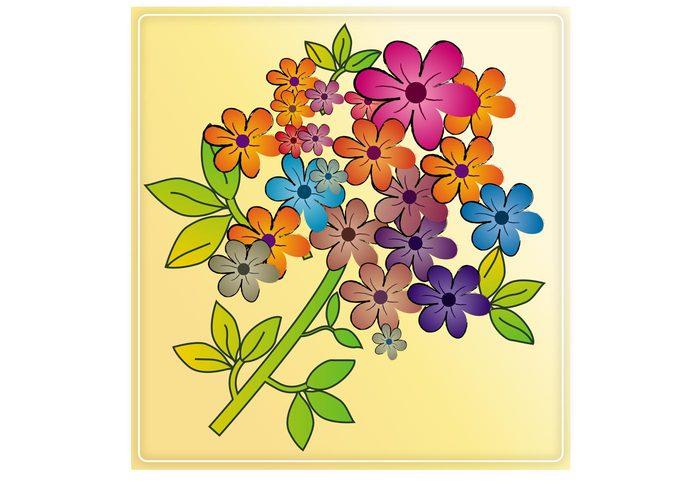 summer spring plants petals nature Free Background flowers floral Desktop background botany blossoms