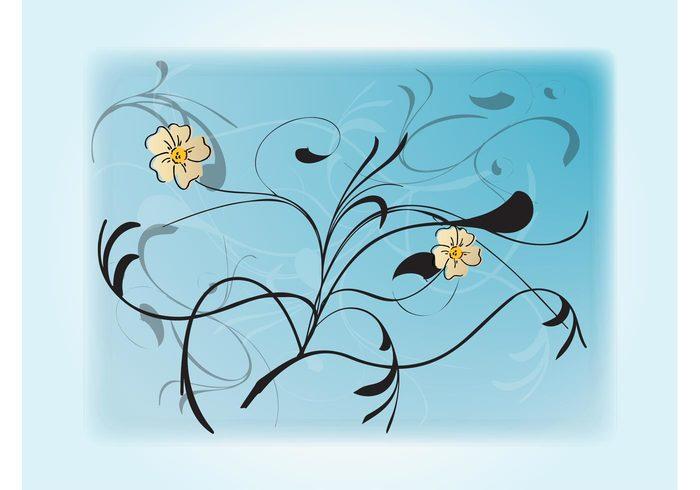 wallpaper plants petals nature leaves flowers floral ecology botany blossoms background image