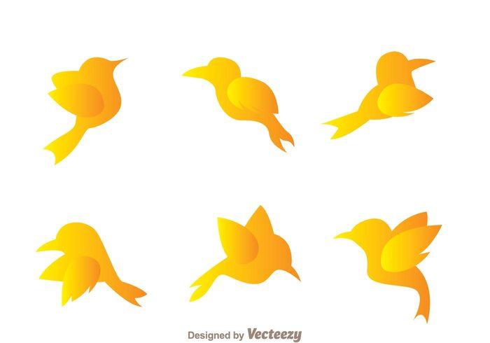 wing silhouette outside outdor orange natural Fowl flying bird silhouettes flying bird silhouette Flying bird flying flight Colibri cartoon bird