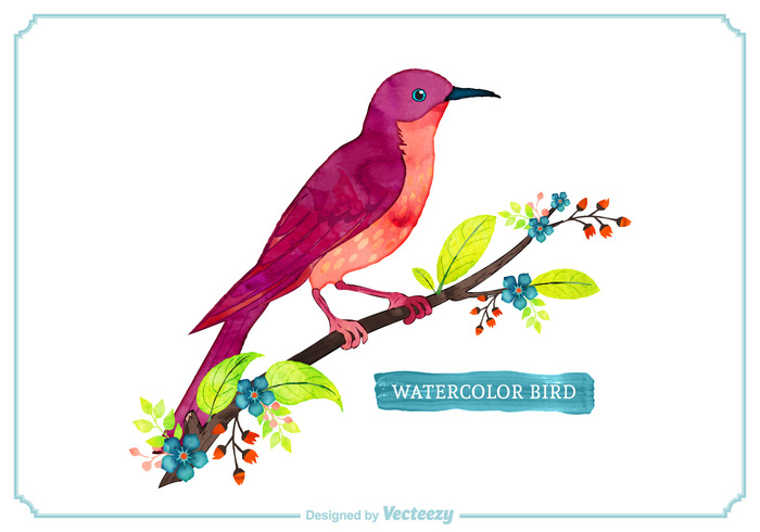 wildlife White Background watercolor style vector spring flowers spring season orange nature Multicoloured multicolored leaves isolated ink illustration green flowers flower floral feather fauna EPS cute Colourful Colour colorful color cherry blossom branch blue birdnature bird beauty art animal