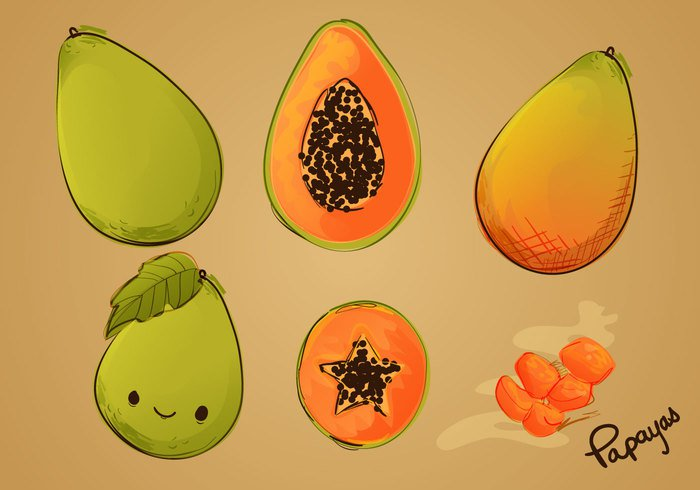 watercolor vitamin vegetarian vector tropical sweet slice sketchy sketched sketch Ripe product papaya organic orange nature natural leaf isolated illustration handdrawn hand drawn green fruit fresh food exotic drawing Diet design background