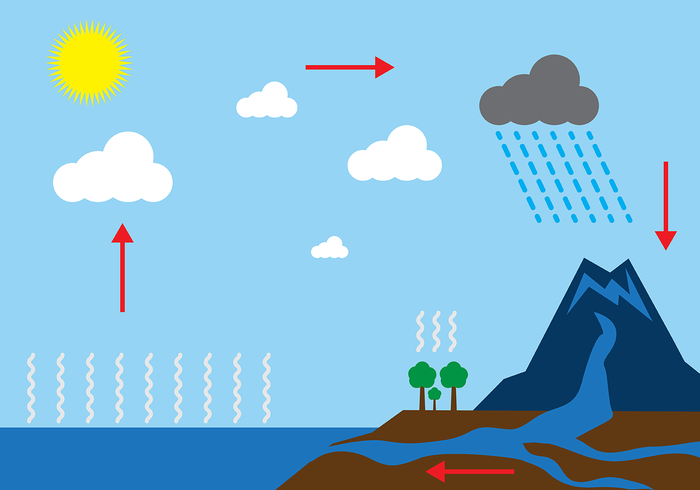 water cycle flow diagram free    water       cycle       diagram    vector welovesolo  free    water       cycle       diagram    vector welovesolo