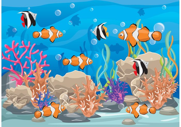 water underwater under the sea tropical fish tropical beach tropical summer seaweed seascape sea plant ocean wallpaper ocean background ocean nature marine life marine fishing fish background diving deep coral reef with fish coral bubble beach