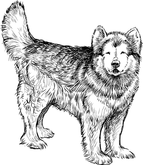Hand Drawn Huskies Dog Vector 01 Welovesolo