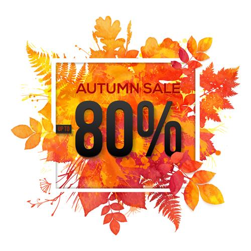 sale maple leaves big autumn
