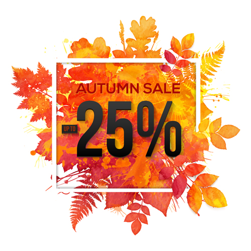 sale maple leaves big background autumn