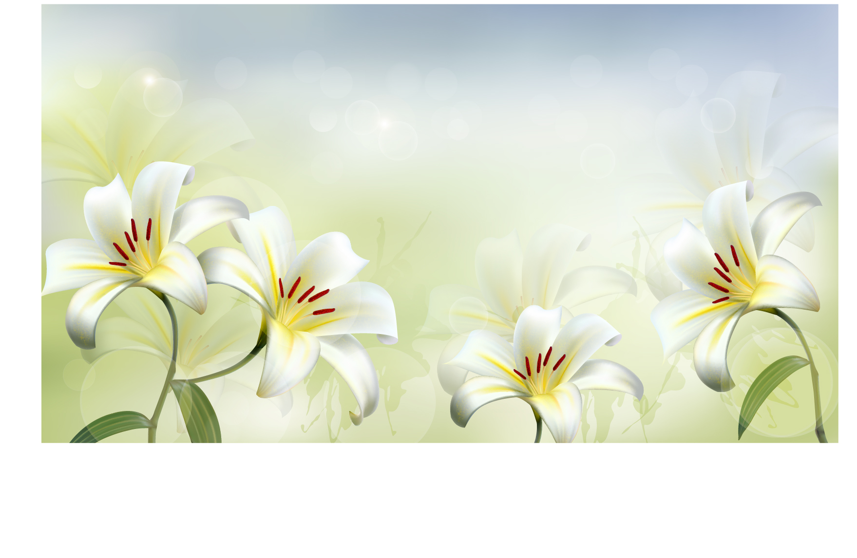 Beautiful White Flower Vector Background 02 Welovesolo