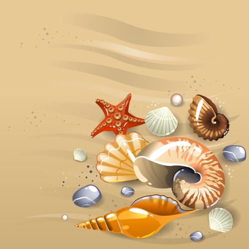 shining seashells