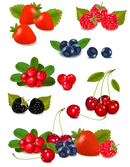 vivid Berry