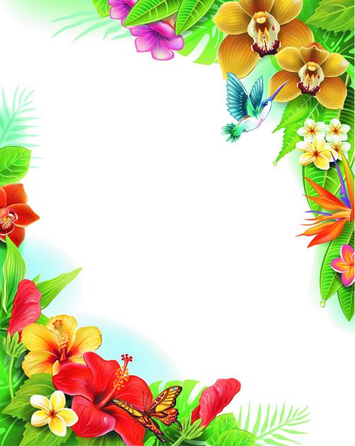 Vector Background Flower Butterflies Beautiful Flowers
