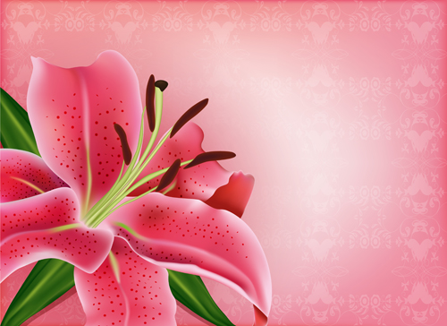 pink flower beautiful Backgrounds background