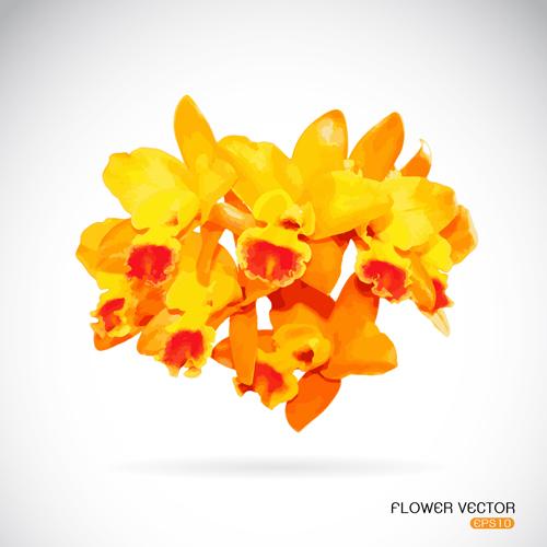 yellow flowers flower beautiful