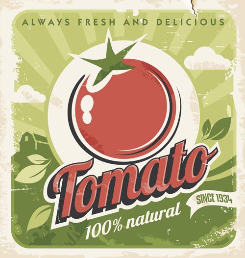 vector material tomato Retro style Retro font poster material