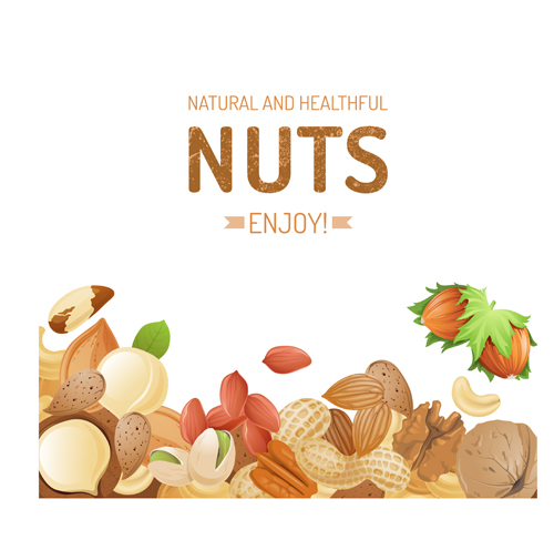 different nuts vector background graphics 02 welovesolo