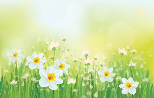 White flowers spring beautiful background vector welovesolo white flowers spring flowers beautiful background mightylinksfo