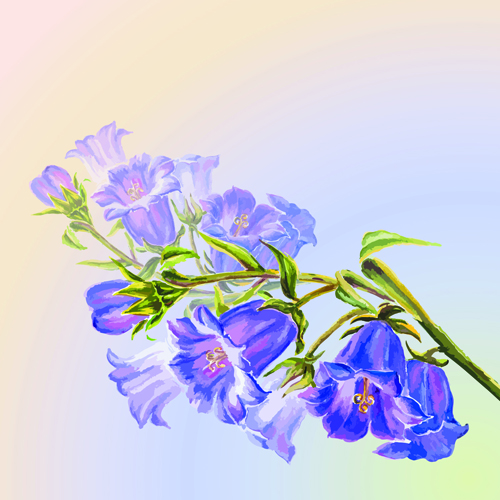 watercolor hand-draw hand drawn flowers flower background flower background