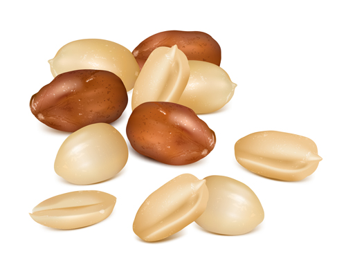 realistic peanut material