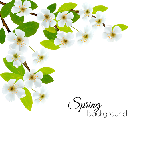 Spring background with white flowers vector welovesolo white flowers spring flowers background mightylinksfo