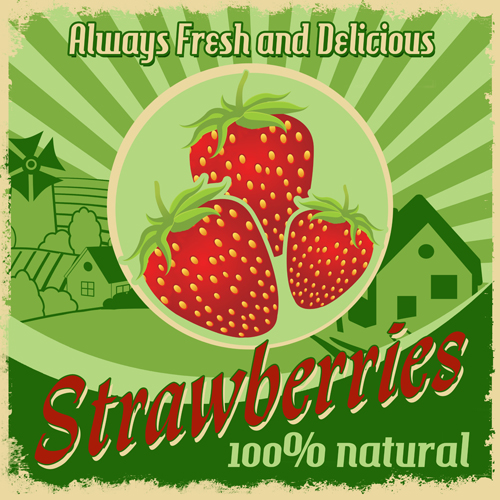 Vintage Style styles strawberries poster
