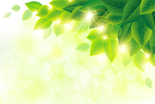 55d1j1hghj0pf25 Spring sunlight with green leaves vector background 02