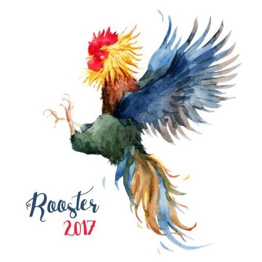 35svpmlzji2uc01 Rooster colored watercolor vector