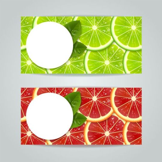 08pmjfktkqhr504 Green with red citrus fruits banners vector